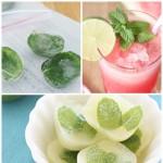 Ways with Fresh Mint